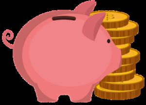 pig-savings-vector-e1495540458228-300x215