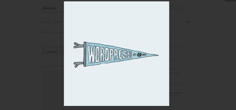 Capture d'écran d'une lightbox WordPress réalisée sans plugin, avec FancyBox