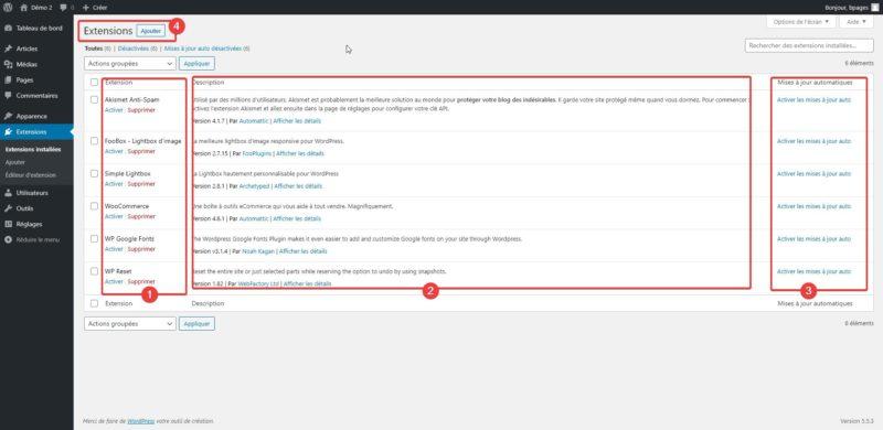 Capture d'écran du panneau des extensions dans l'admin WordPress.