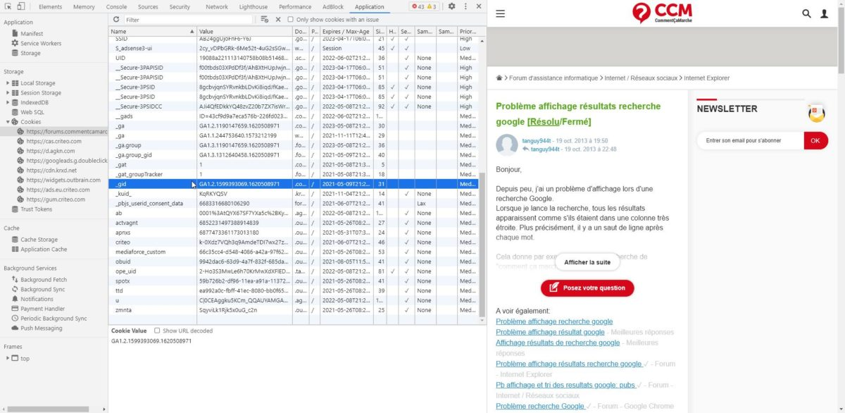 Capture d'écran de la liste des cookies installés par un site, dont le fameux cookie _gid.