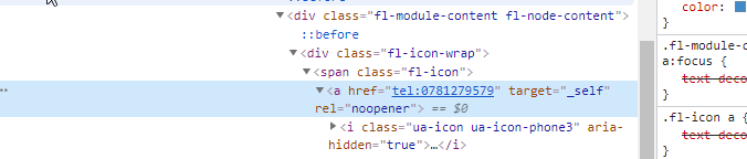 Capture d'écran du code source d'une page montrant un numéro de téléphone cliquable